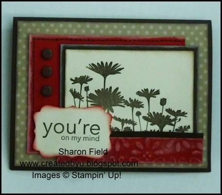 UDI30_SharonField