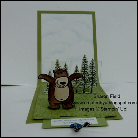 Double Pop Up Slider Card, Window Sheet, Beary Nice Wishes, Shop Online, Stampin Up, Createdbyu, Sharon Field