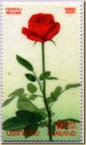 Thailand Rose scented Flox paper