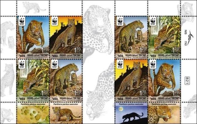 Leopard Sheet