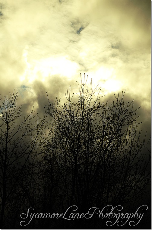 clouds rimmed with sunlight