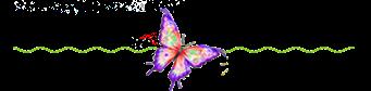 ComentMariposa copia