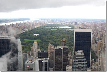 Central Park form the top of the rock