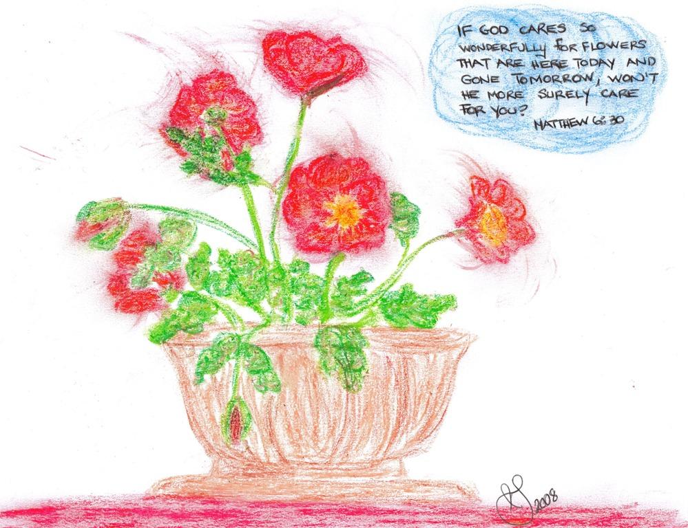 [2008_08_16 Flowers[3].jpg]