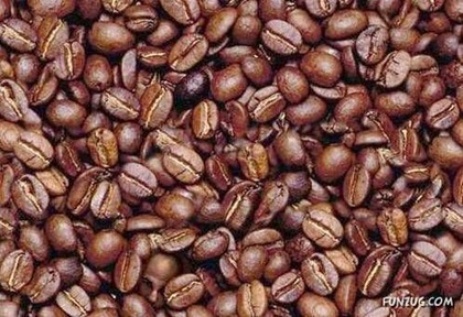 coffee_beans_test_01