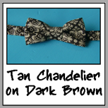 tan chandelier on dark brown