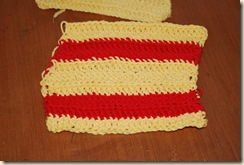 striped dish rag