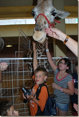 JB and giraffe