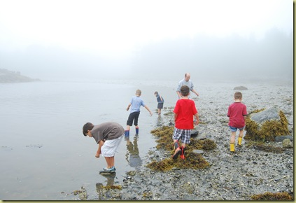 boys at low tide with brian