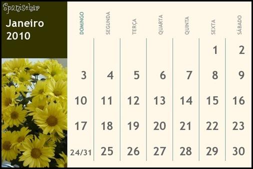 calendario jan 2010