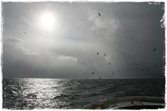 2011.03.25 085-01