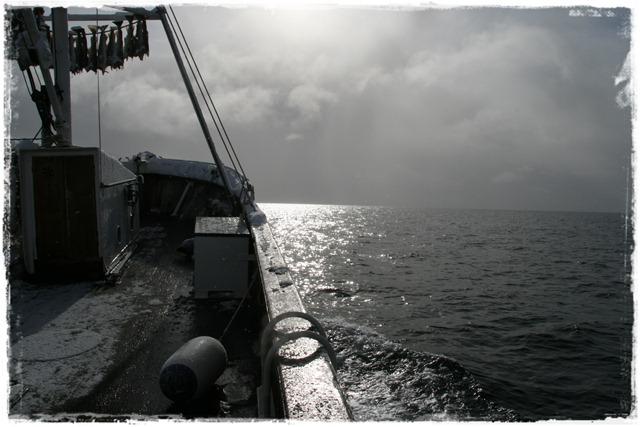 2011.03.27 081-01