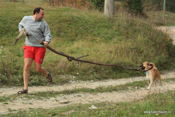 La pensiunea Dor de Bucovina