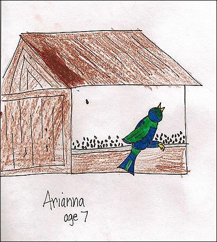 bird feederA