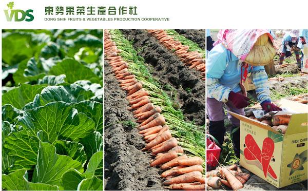 食品展-東勢果菜生產合作社打響日本知名度