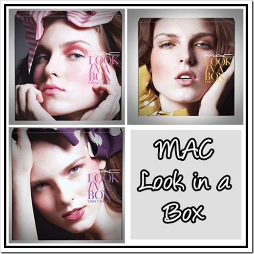 MAC-Look-in-a-Box-2010