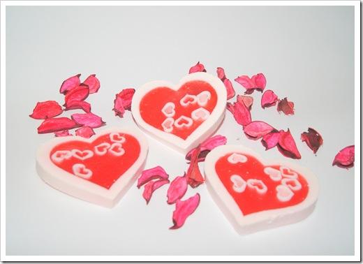 לבבות ירדן לוולנטיינס - צילום יחצ