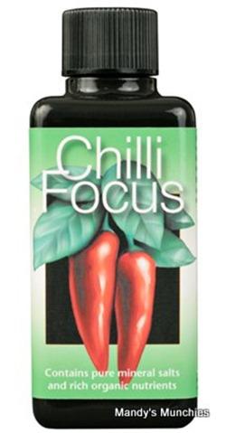 ChilliFocus100