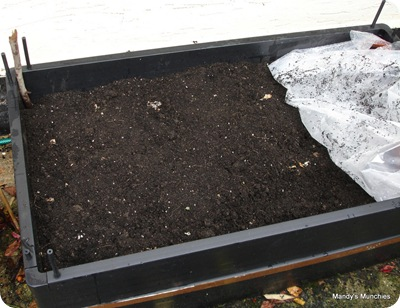 Raised bed dug over 3 Nov 09