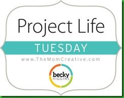Blog- Project Life