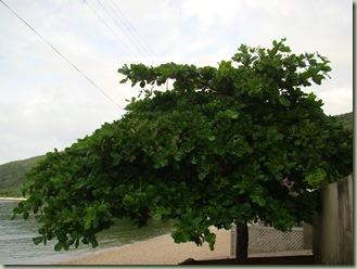200309 058