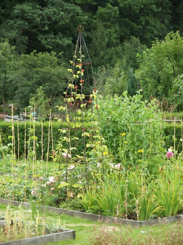 2010-08-10 Hagen (13)