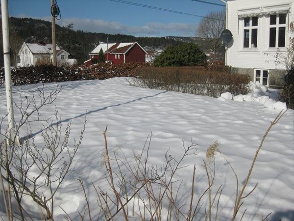 2011-03-05 Hagen på Møll (1)