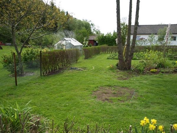 2011-05-16 Hagen i mai (9)