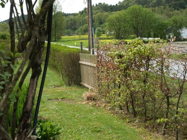 2011-05-16 Hagen i mai (20)
