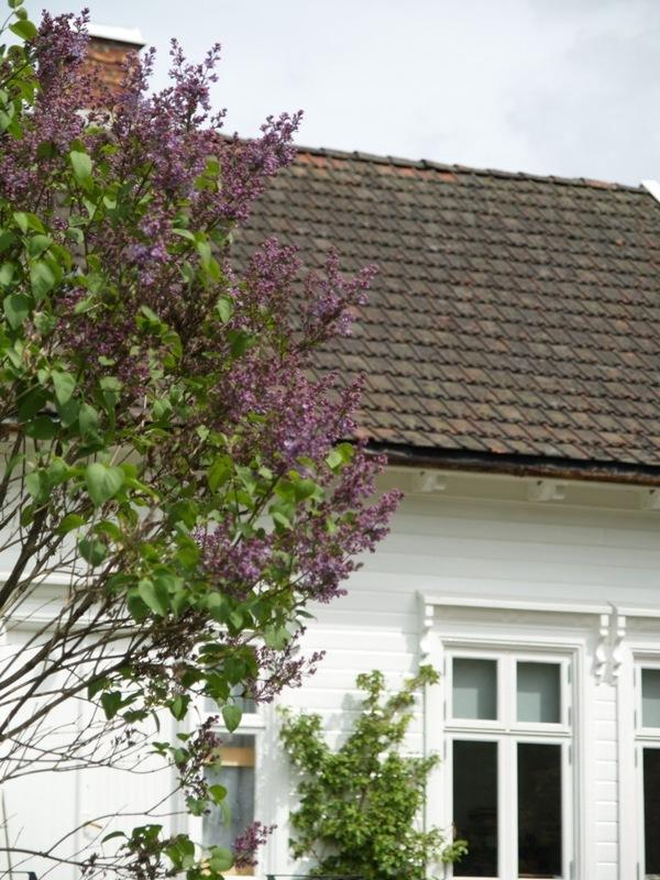 2011-05-16 Hagen i mai (42)