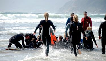 Whales beach in Kommetjie, Cape Town, South Africa.  Last effort to save one of the whales.