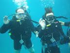 Эйлат: дайвинг с дельфинами