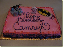 August 2010 - Camryn's 2nd Birthday (15)