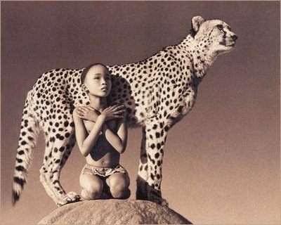 Gregory Colbert a importancia do vazio