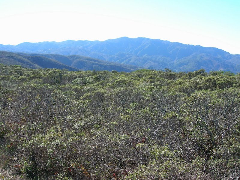 Montara Mountain
