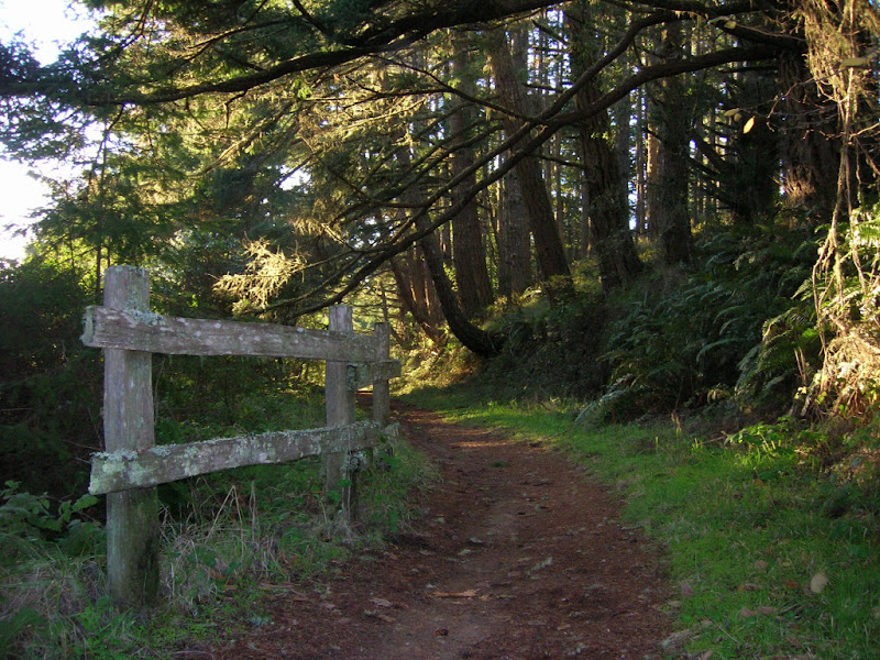 Glen Trail