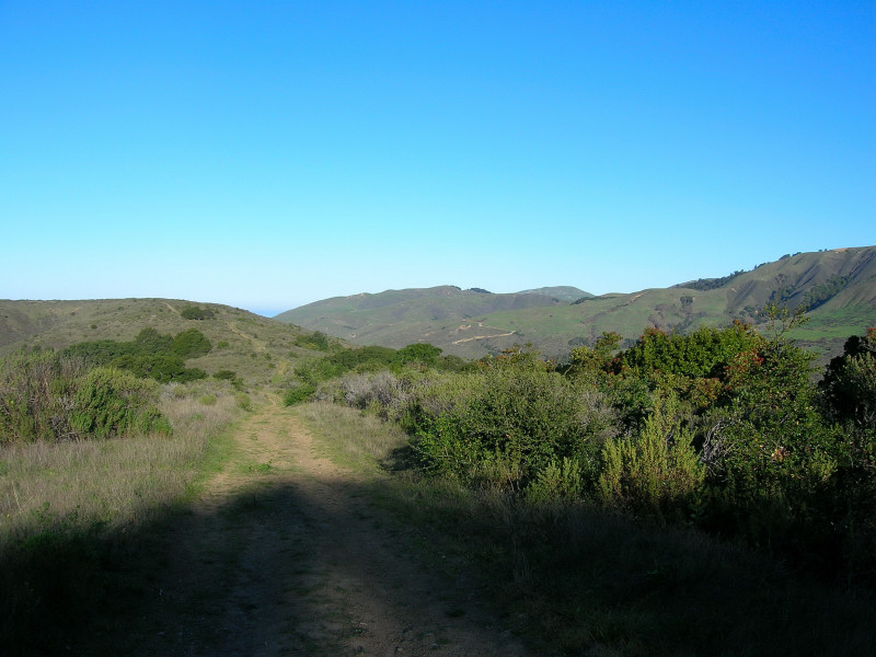 The ridge trail
