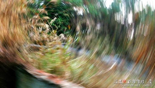 20090107眩.jpg