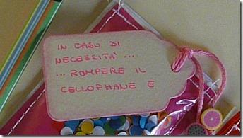 insolito carnevale (2)