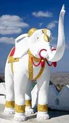 gajah-putih