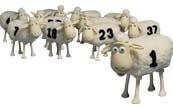 Serta_Sheep.jpg