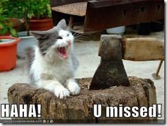 cat u missed