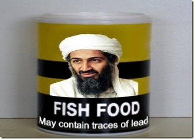 fish food