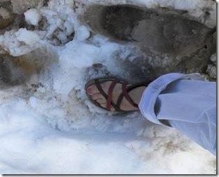 deb feet in snow