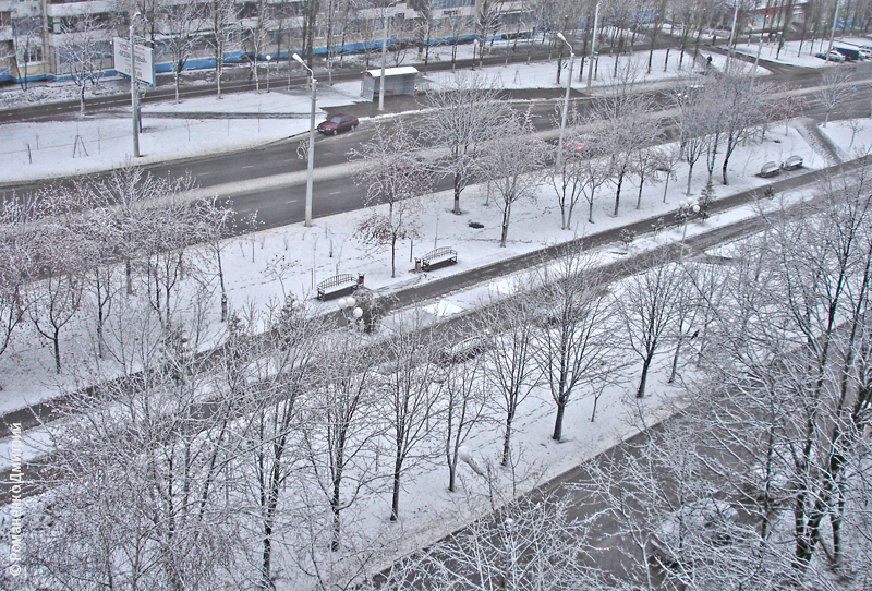 Первый снег в Белгороде