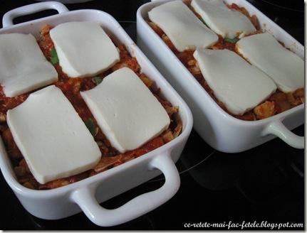 Gnocchi cu piept de pui şi mozzarella - asezam mozzarella