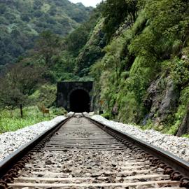Track leading to tunnel by Deepak Sharma - Transportation Trains ( track, train, forest, india, walk, karnataka, tunnel )