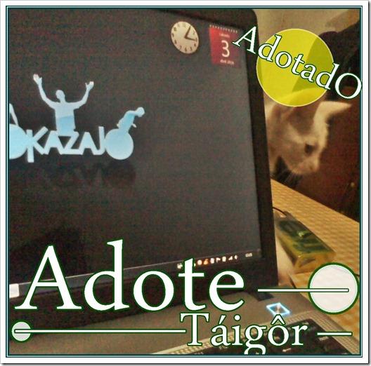ADOTADA taigor