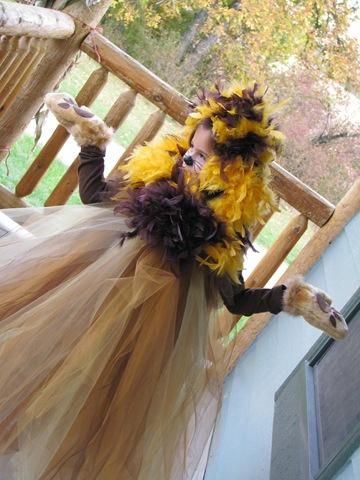 Pumpkinpatchoct2009 008