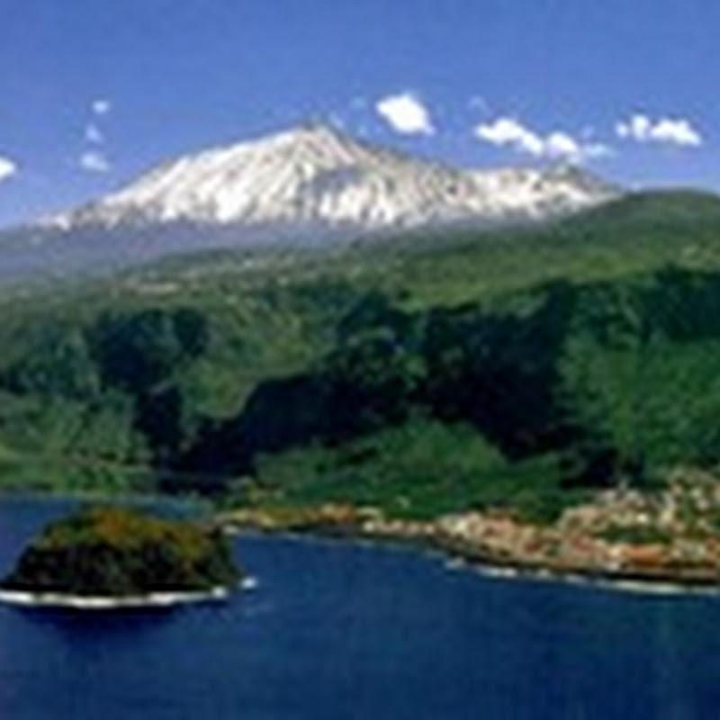 Proyecto Salvemos las Mariposas Monarcas (Tenerife - Islas Canarias)